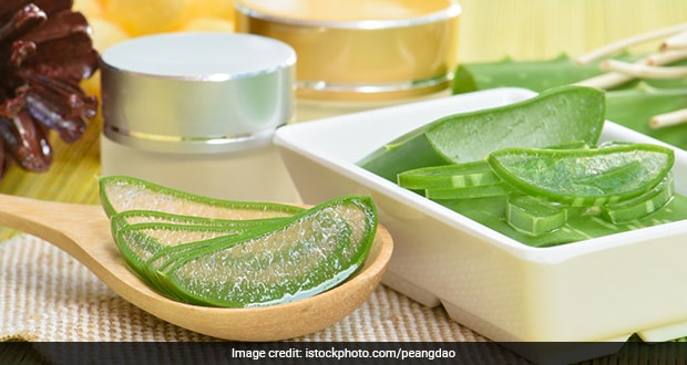 Aloe vera Will Protect Air Pollution in Hindi