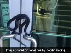 Snake Wraps Itself On Door Handle. Viral Video Will Make You Squirm