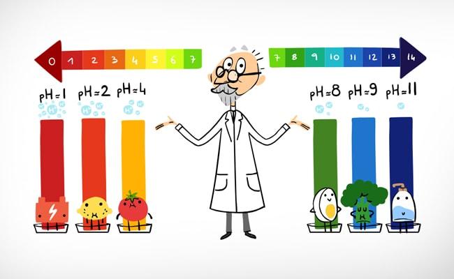 spl sorensen google doodle