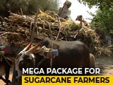 Video : As Cane Dues Touch 22,000 Crores, Centre Plans 8,000 Crore-Balm: Sources