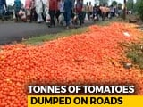 Video : Farmers In UP's Amroha Dump Tomatoes On Streets After Prices Go South