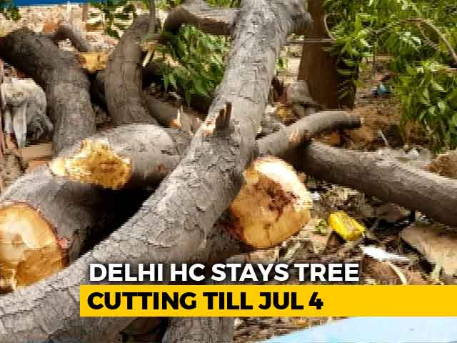 Video : No More Delhi Trees To Be Cut Till July 4, Says High Court
