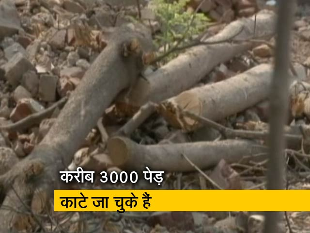 Videos : दिल्ली में पेड़ काटने की योजना पर हंगामा