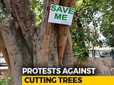 Video: Delhi Residents Win Battle To Save Trees, For Now