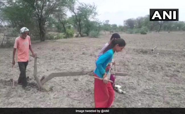 In Uttar Pradesh, Sisters Plough Field To Please Rain God For Monsoon