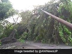 17 Dead In Thunderstorms Across Uttar Pradesh