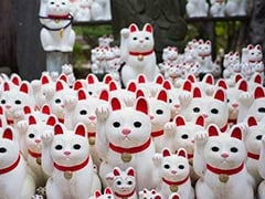 """Tokyo's """"Lucky Cat"""" Temple Is An Instagrammer's Favourite Destination"""