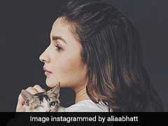 International Cat Day: Alia Bhatt To Jacqueline Fernandez, These Stars Love Their 'Purr-Fect' Friends