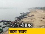 Video : GROUND REPORT : गंगा नदी का घटता जलस्तर, रेत के टीले दिखने लगे