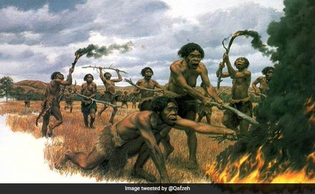 आलस के कारण विलुप्त हो गए थे Homo Erectus, जीने के लिए बनाई थीं ऐसी रणनीति