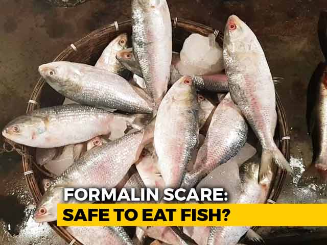 Video : Formalin Scare: Safe To Eat Fish?