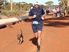 Stray Dog Finishes Australia Half-Marathon, Wins Medal