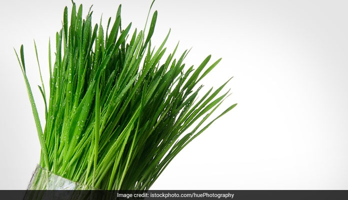 Wheatgrass: 7 Amazing Health Benefits Of Wheatgrass