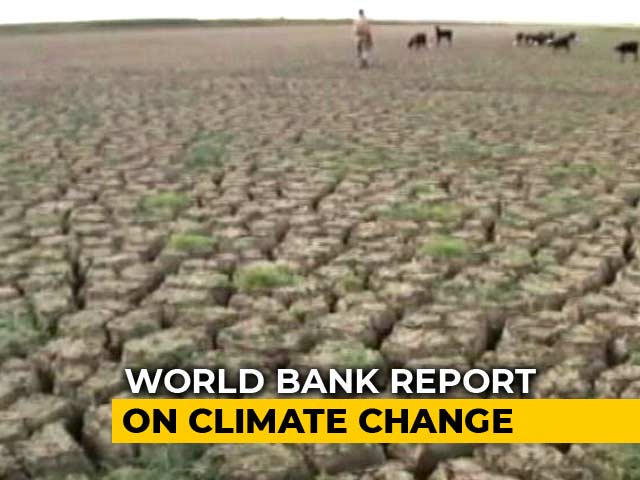 Video : Climate Change Could Cost India 2.8 Per Cent Of GDP By 2050: World Bank