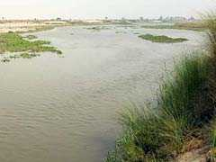 National Security Act Invoked Against Mafia Don Who Built Dam On Yamuna